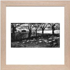 Sheep Early Spring - Ready Framed